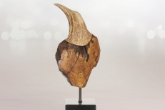 L'Oiseau des bois