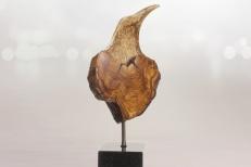 L'Oiseau des bois I